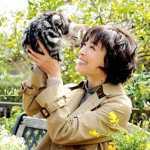 「グーグーだって猫である」宮沢りえ主演でドラマ化